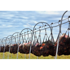 Hệ thống ròng rọc thu gom nông sản