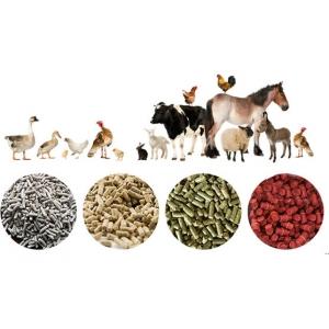 Dây chuyền sản xuất thức ăn chăn nuôi dạng viên