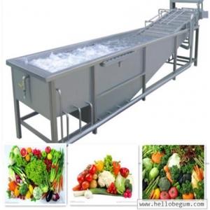 Máy rửa rau củ quả